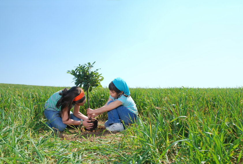 Two children planting a tree together