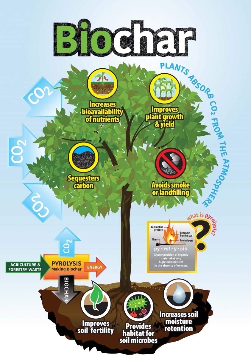 Infographic on the benefits of biochar