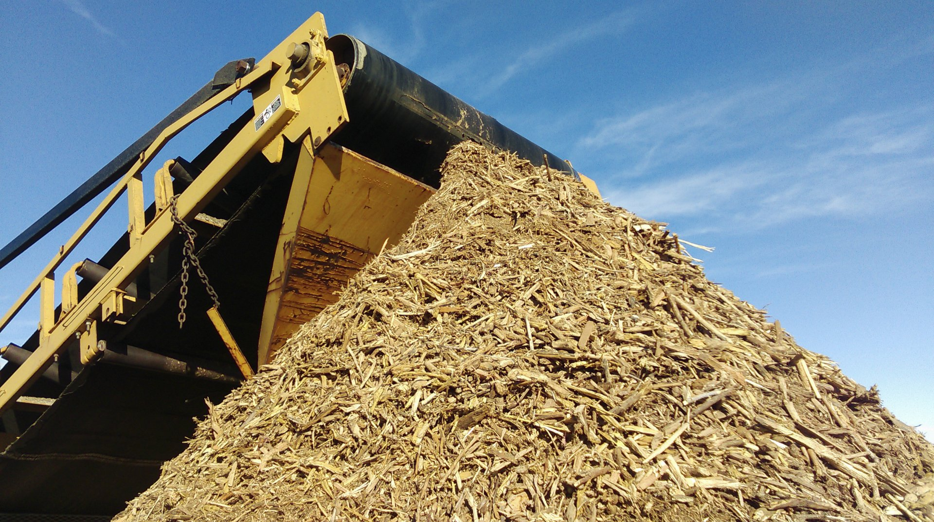 Woodchips travel off a conveyor belt for biochar processing.