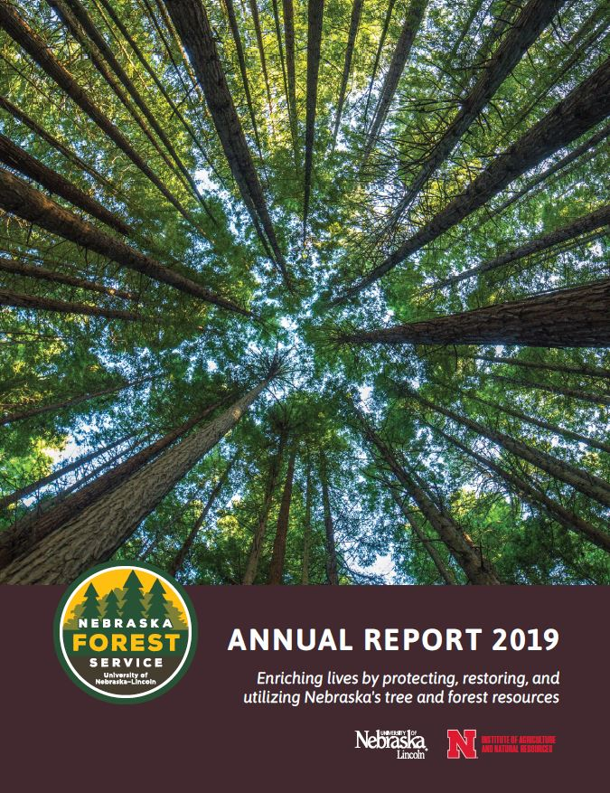 2019 Annual Report Cover Photo