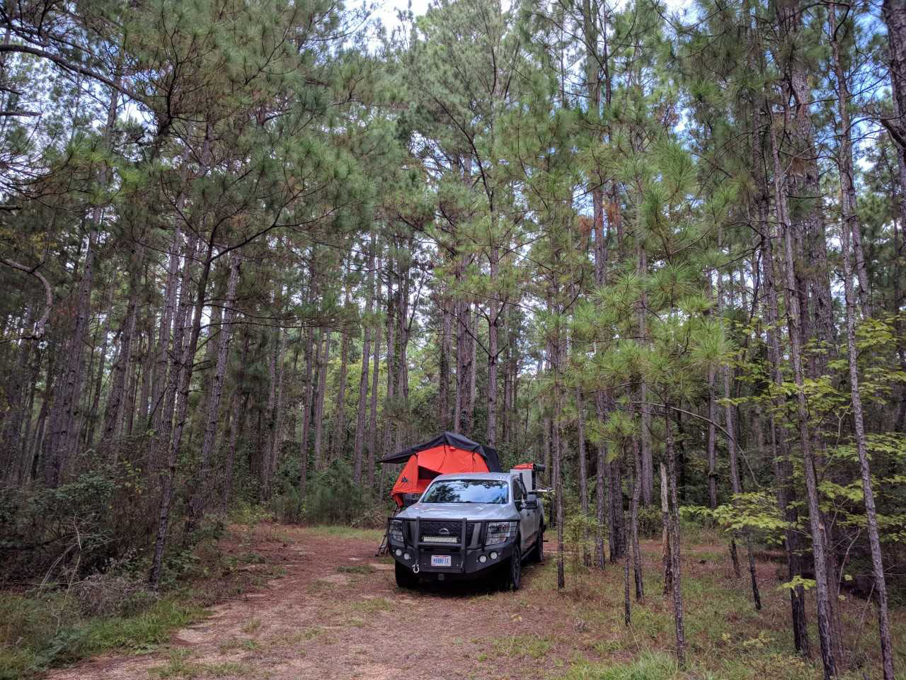 Mike Repas stops for a quick night's rest in the Kisatchie National Forest in Louisiana.