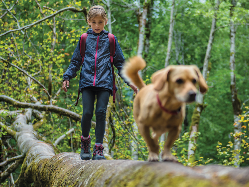 Girl walking on log with her dog.
