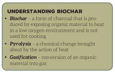 Glossary of biochar terms