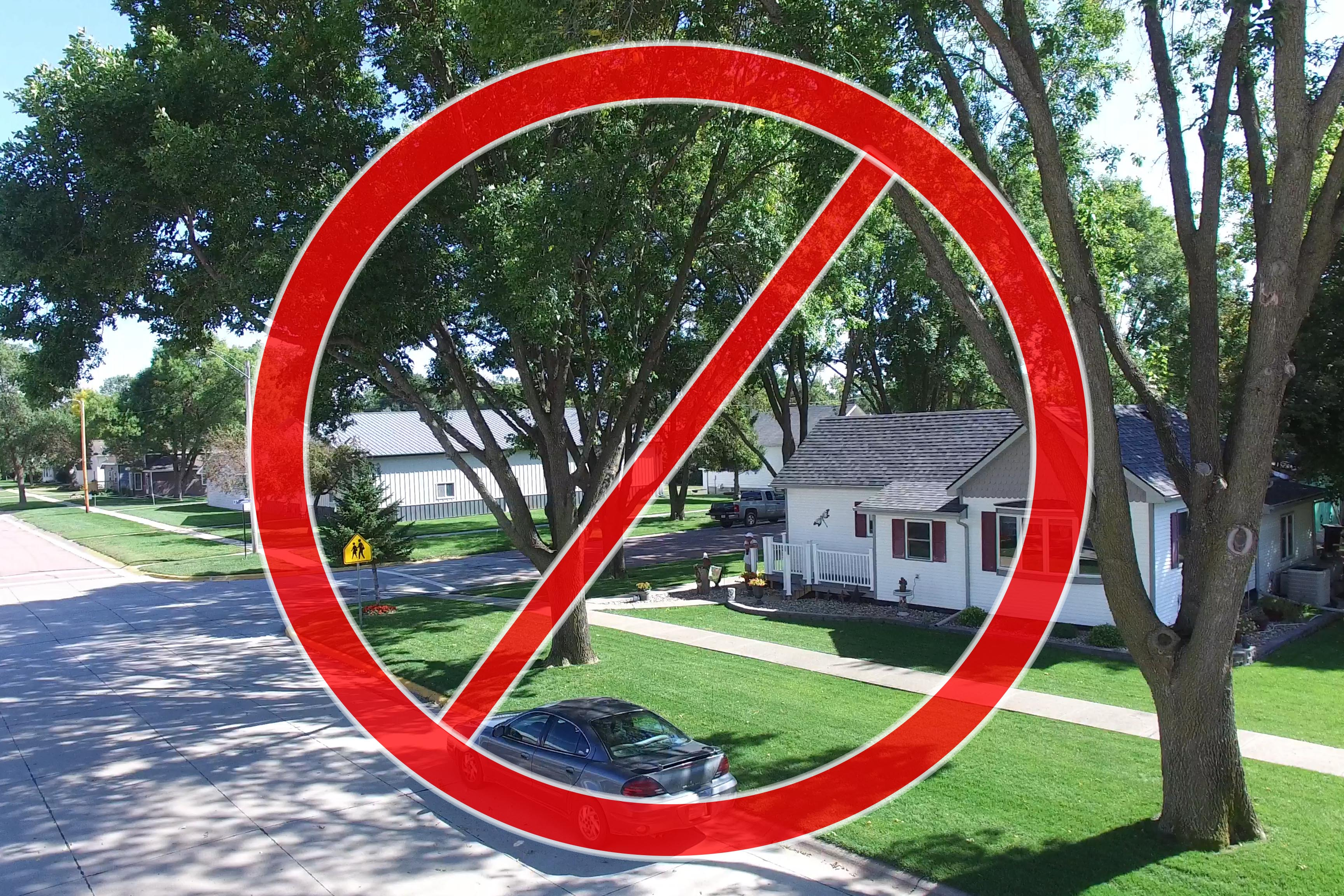 Native ash trees are no longer recommended for plantings.