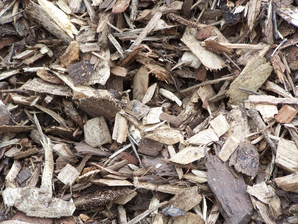 Close up photograph of wood chips.