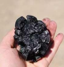 Photo of someone holding a piece of biochar