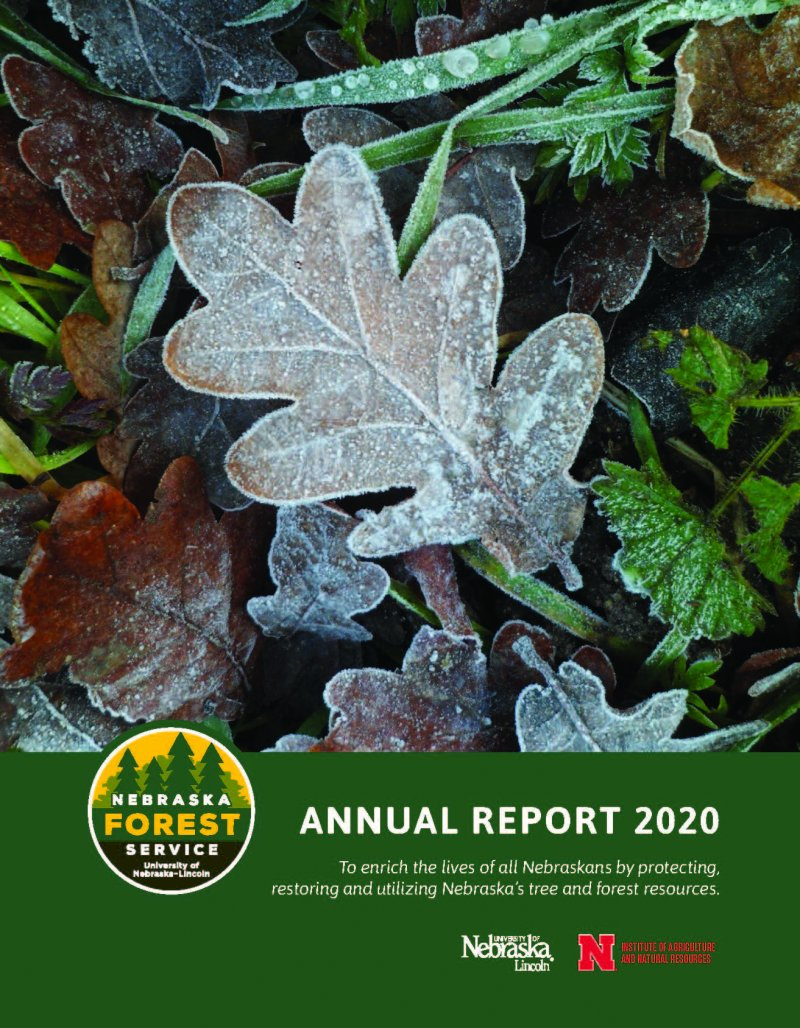 Cover photo of 2020 annual report.