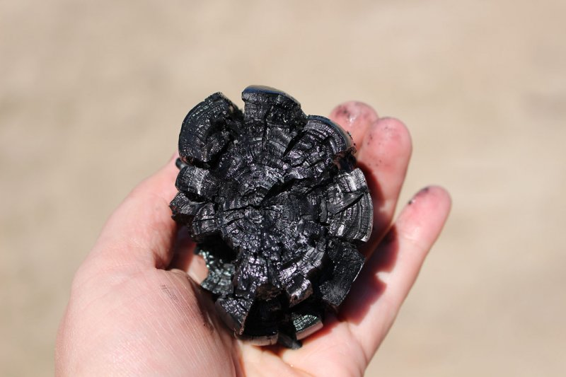 Biochar displayed in hand.