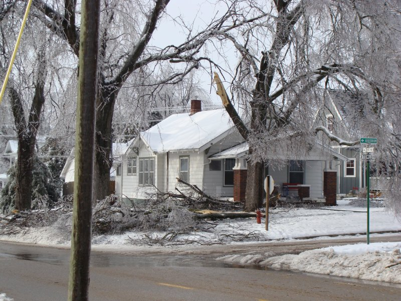 Ice storm brings down limb in homeowner's yard.