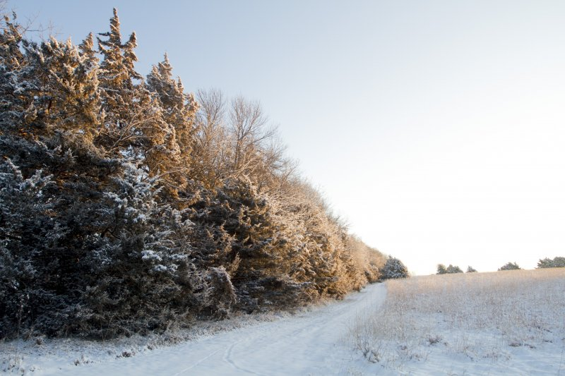 A windbreak helps deter blowing and drifting snow.